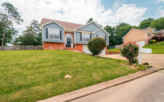 6220 Hunter Valley Road, Ooltewah, TN 37363 (MLS #20194510) :: The Jooma Team