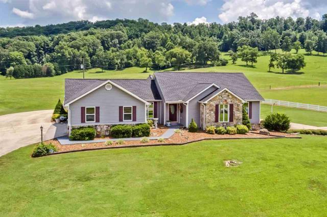 347a County Road 67, Riceville, TN 37370 (MLS #20194689) :: The Mark Hite Team