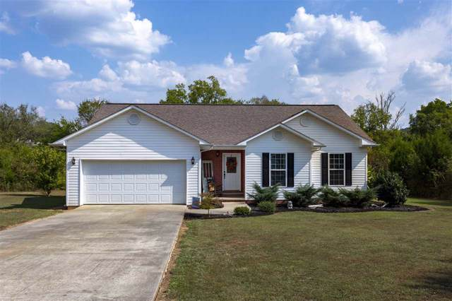 228 Jill Kristin Lane, Spring City, TN 37381 (MLS #20195387) :: The Mark Hite Team