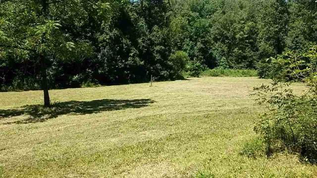370 Wildcat Drive, Tellico Plains, TN 37385 (#20195415) :: Billy Houston Group