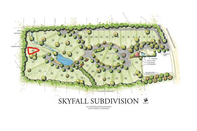 0 Skyfall Drive Lot 20, Ooltewah, TN 37363 (MLS #20195635) :: The Mark Hite Team
