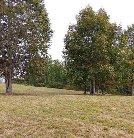 Lot 65 Hidden Forest Trail, Spring City, TN 37381 (MLS #20195727) :: The Mark Hite Team