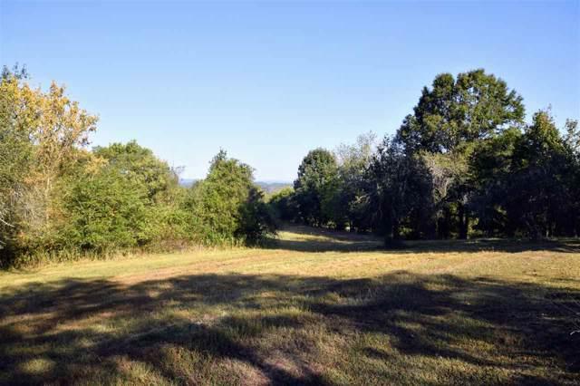 481 Mccustion Cemetery Road, Spring City, TN 37381 (MLS #20195963) :: The Mark Hite Team