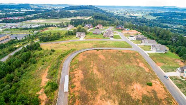 44 Amber Way SW, Cleveland, TN 37311 (#20196094) :: Billy Houston Group
