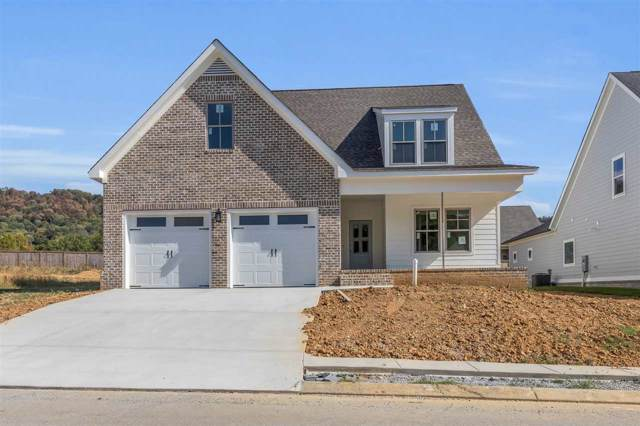 8897 Silver Maple Dr, Ooltewah, TN 37363 (MLS #20196164) :: The Jooma Team