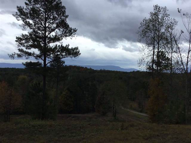 Tract 9 County Road 754, Riceville, TN 37370 (MLS #20196605) :: The Mark Hite Team