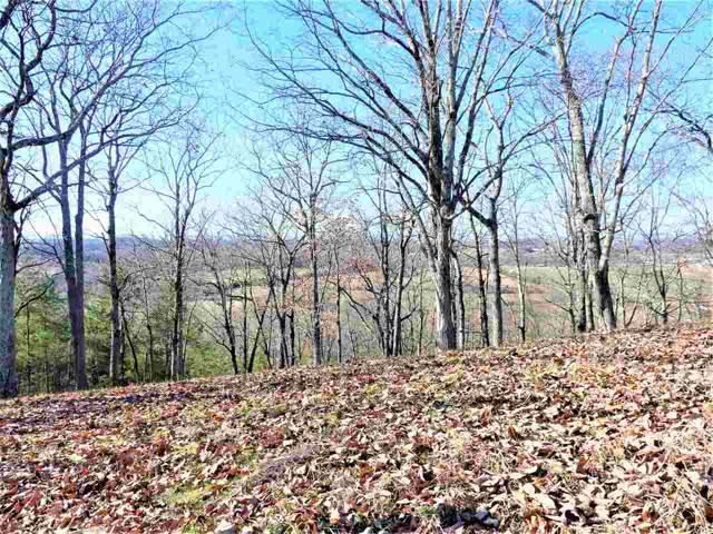 Lot 92 975 County Road 316, Niota, TN 37826 (MLS #20196995) :: The Edrington Team