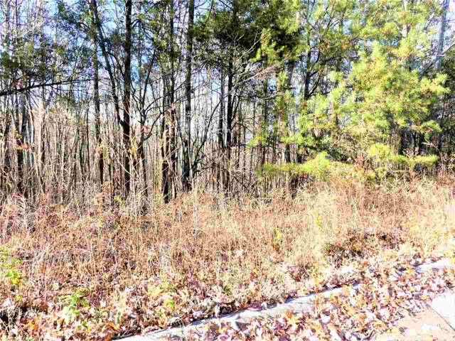 Lot 202 975 County Road 316, Niota, TN 37826 (MLS #20196997) :: The Edrington Team