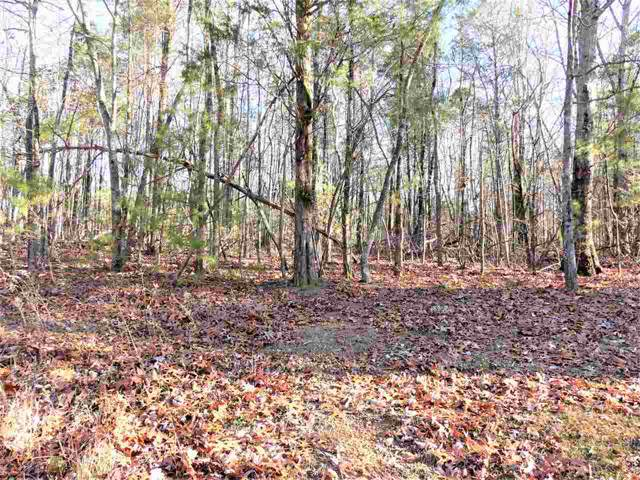 Lot 203 975 County Road 316, Niota, TN 37826 (MLS #20196998) :: The Edrington Team