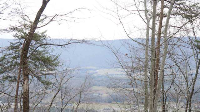 Lot 52 Bluff View Drive, Dunlap, TN 37327 (MLS #20197028) :: The Edrington Team