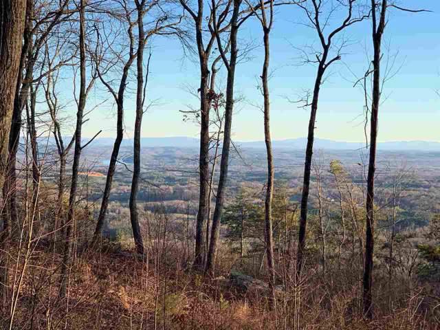 16 Duckwood Lane, Evensville, TN 37332 (#20200056) :: Billy Houston Group