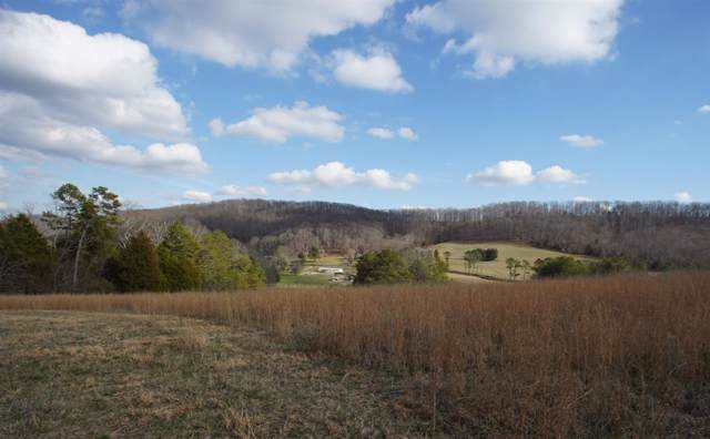 000 County Road 280, Niota, TN 37826 (MLS #20200536) :: The Edrington Team