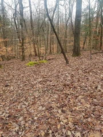 Lot #66 Red Cloud Trail, Spring City, TN 37381 (MLS #20200652) :: The Mark Hite Team