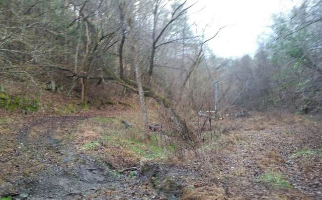 29 Acres Willie Shell Road, Reliance, TN 37369 (MLS #20200676) :: The Mark Hite Team