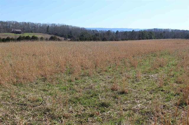 6.27 acres Chestuee Rd, Delano, TN 37325 (MLS #20200835) :: The Mark Hite Team
