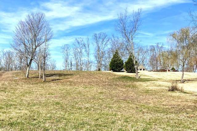 Lot 32 Waterfront Way, Spring City, TN 37381 (MLS #20200868) :: The Mark Hite Team