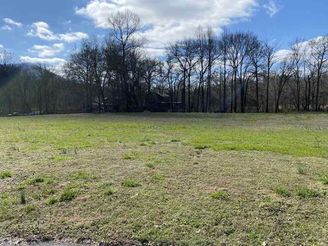 132 Tadpole Lane, Benton, TN 37307 (#20201118) :: Billy Houston Group