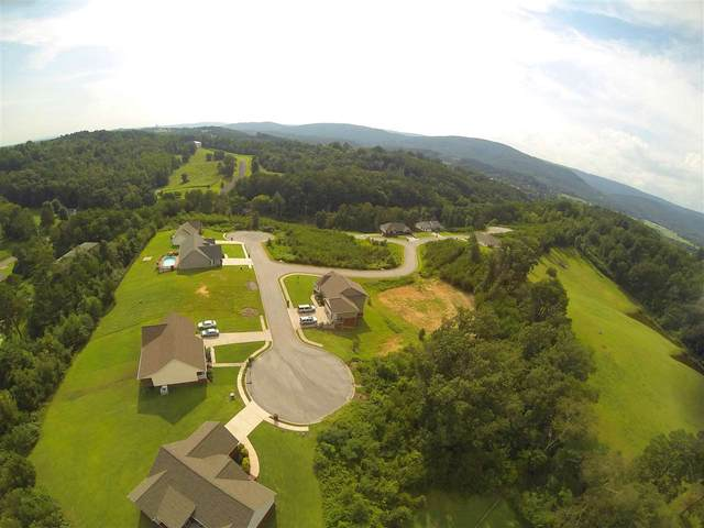 112 Nichole Drive, Dayton, TN 37321 (#20201356) :: Billy Houston Group