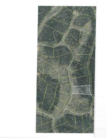 000 Hidden Forest Trail, Spring City, TN 37381 (MLS #20204369) :: The Mark Hite Team