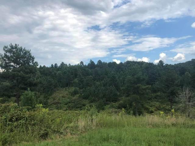 Lot 37 South Ridge Line Road, Decatur, TN 37322 (#20204604) :: Billy Houston Group