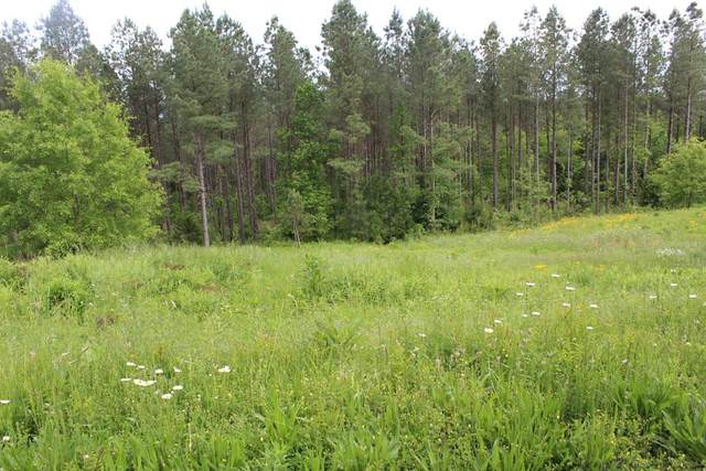 Lot 9 Hiwassee Trail Drive, Delano, TN 37325 (MLS #20204694) :: The Edrington Team