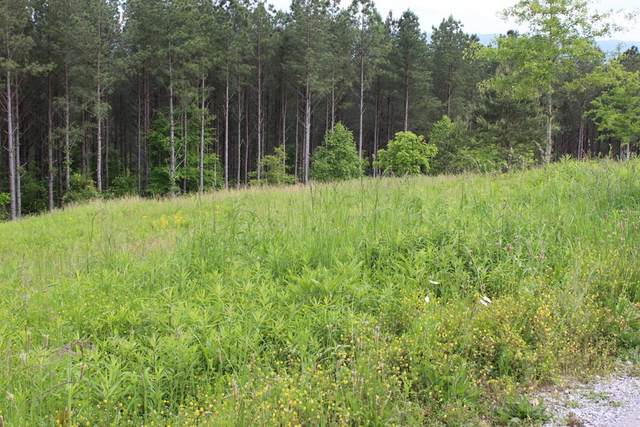 Lot 12 Hiwassee Trails Drive, Delano, TN 37325 (MLS #20204696) :: The Edrington Team