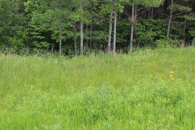 Lot 13 Hiwassee Trails Drive, Delano, TN 37325 (MLS #20204697) :: The Edrington Team