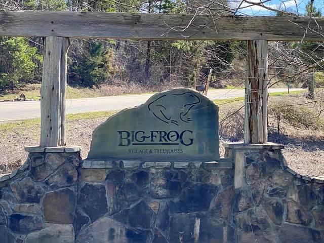 165 Tree Frog Lane, Benton, TN 37307 (#20204768) :: Billy Houston Group