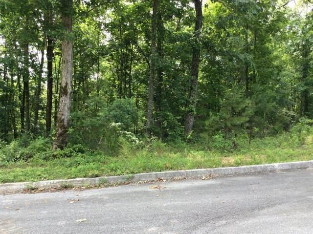 Lot 11 Deer Ridge Rd, Kignston, TN 37763 (MLS #20204980) :: The Jooma Team