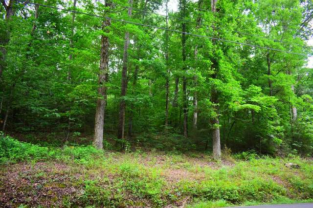 Lot #24 NE Hollow Road, Cleveland, TN 37323 (MLS #20205357) :: Austin Sizemore Team