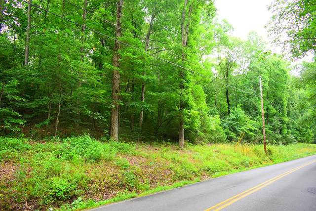 Lot 23 NE Hollow Road, Cleveland, TN 37312 (MLS #20205359) :: Austin Sizemore Team