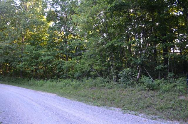 TBD Overlook Trail, Spring City, TN 37381 (MLS #20205504) :: The Mark Hite Team