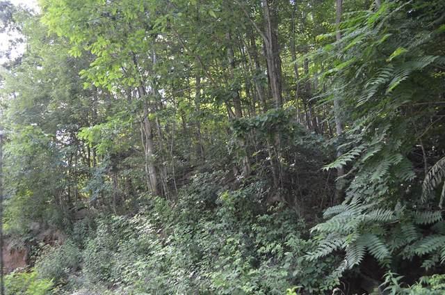 TBD Overlook Trail/Dustin Ridge Road, Spring City, TN 37381 (MLS #20205507) :: The Mark Hite Team