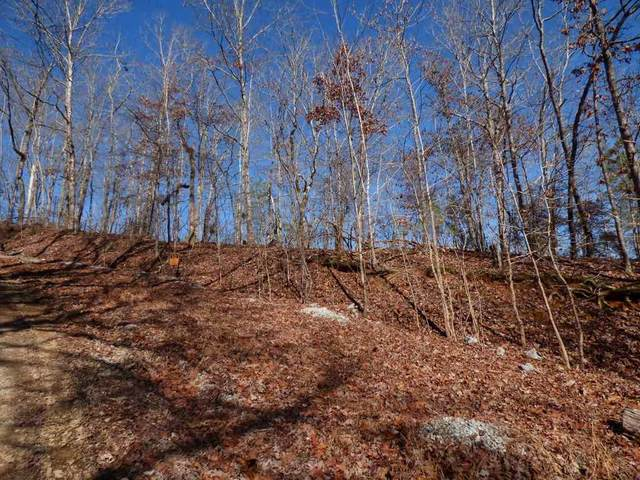 lot 492 & 49 Rockview Drive, Spring City, TN 37381 (MLS #20205530) :: The Mark Hite Team