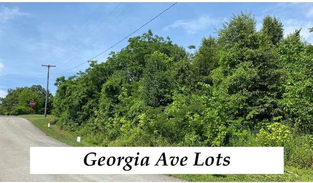 Lot #53 Georgia, Athens, TN 37303 (MLS #20205993) :: The Mark Hite Team