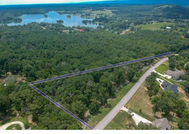 300 Shoreline Drive, Spring City, TN 37381 (MLS #20206178) :: The Mark Hite Team
