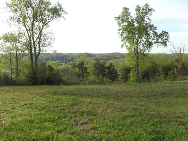 10 Acres Dawn Drive, Spring City, TN 37381 (#20206474) :: Billy Houston Group