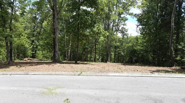 Lot #15 Waterview Drive, Spring City, TN 37381 (#20206522) :: Billy Houston Group