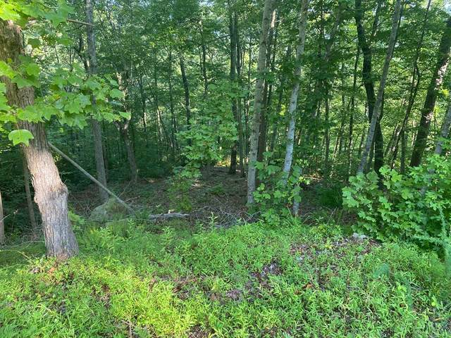 Lot 37 Eerie Point, Rockwood, TN 37854 (MLS #20206647) :: The Edrington Team