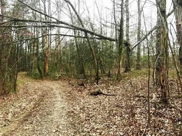 300 Wildcat Trail, Madisonville, TN 37354 (MLS #20206903) :: The Edrington Team