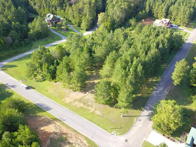 344 SW Mountain View Circle, Ocoee, TN 37361 (#20207341) :: Billy Houston Group