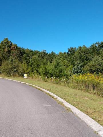 Lot 4 NW Walker Brow Trail, Cleveland, TN 37312 (MLS #20207397) :: The Mark Hite Team