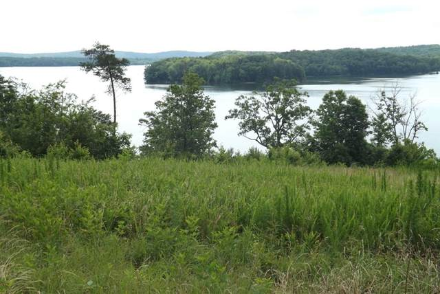 Lot #48 River Run Trail, Spring City, TN 37381 (MLS #20208856) :: The Jooma Team
