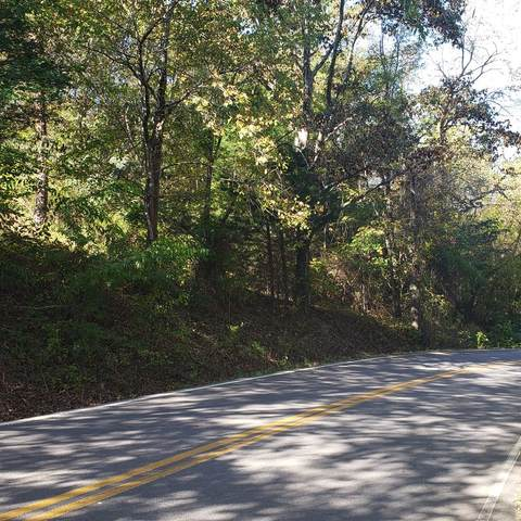 0 Reliance Road, Tellico Plains, TN 37385 (MLS #20208950) :: The Jooma Team