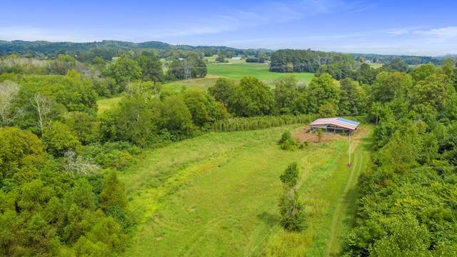 50.34 Ac County Road 61, Riceville, TN 37370 (MLS #20209589) :: The Mark Hite Team