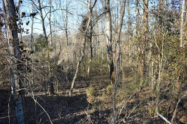 Lot 15 Clearview Drive, Rockwood, TN 37854 (MLS #20210336) :: The Jooma Team