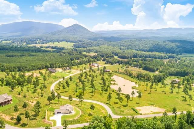 3.92 Acres Ocoee Ridge Subdivision, Ocoee, TN 37361 (MLS #20210395) :: The Mark Hite Team