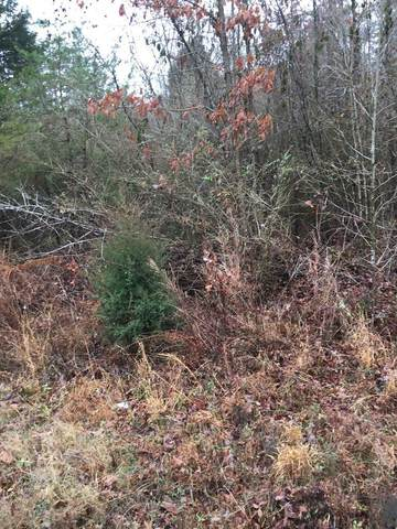 Lot 5 Ten Mile Lane, Ten Mile, TN 37880 (MLS #20210961) :: The Mark Hite Team