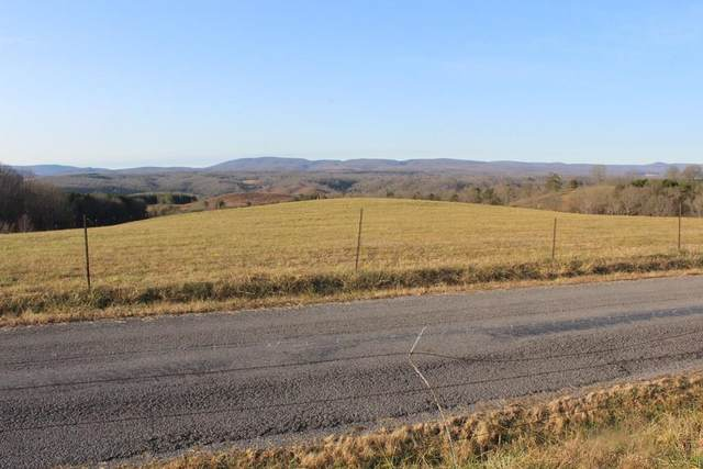 Lot 8 B Big Neck Road, Grandview, TN 37337 (#20211146) :: Billy Houston Group