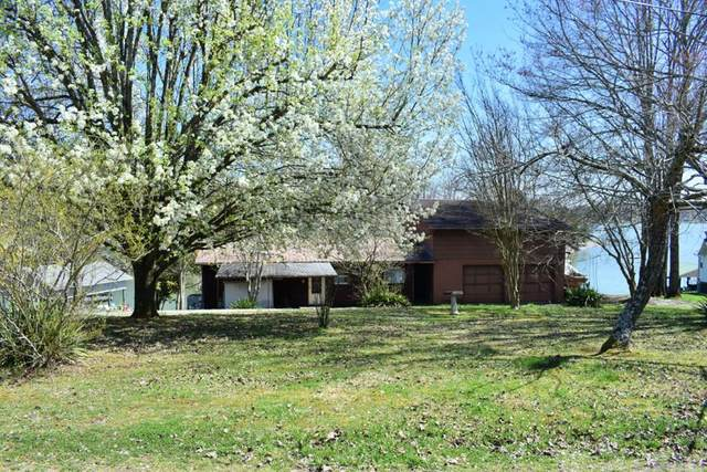 219 Lakeshore Court, Spring City, TN 37381 (#20211625) :: Billy Houston Group